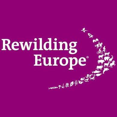 Enterprise Officer at Rewilding Rhodopes