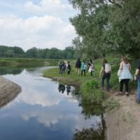 The success story of nature development in the Netherlands