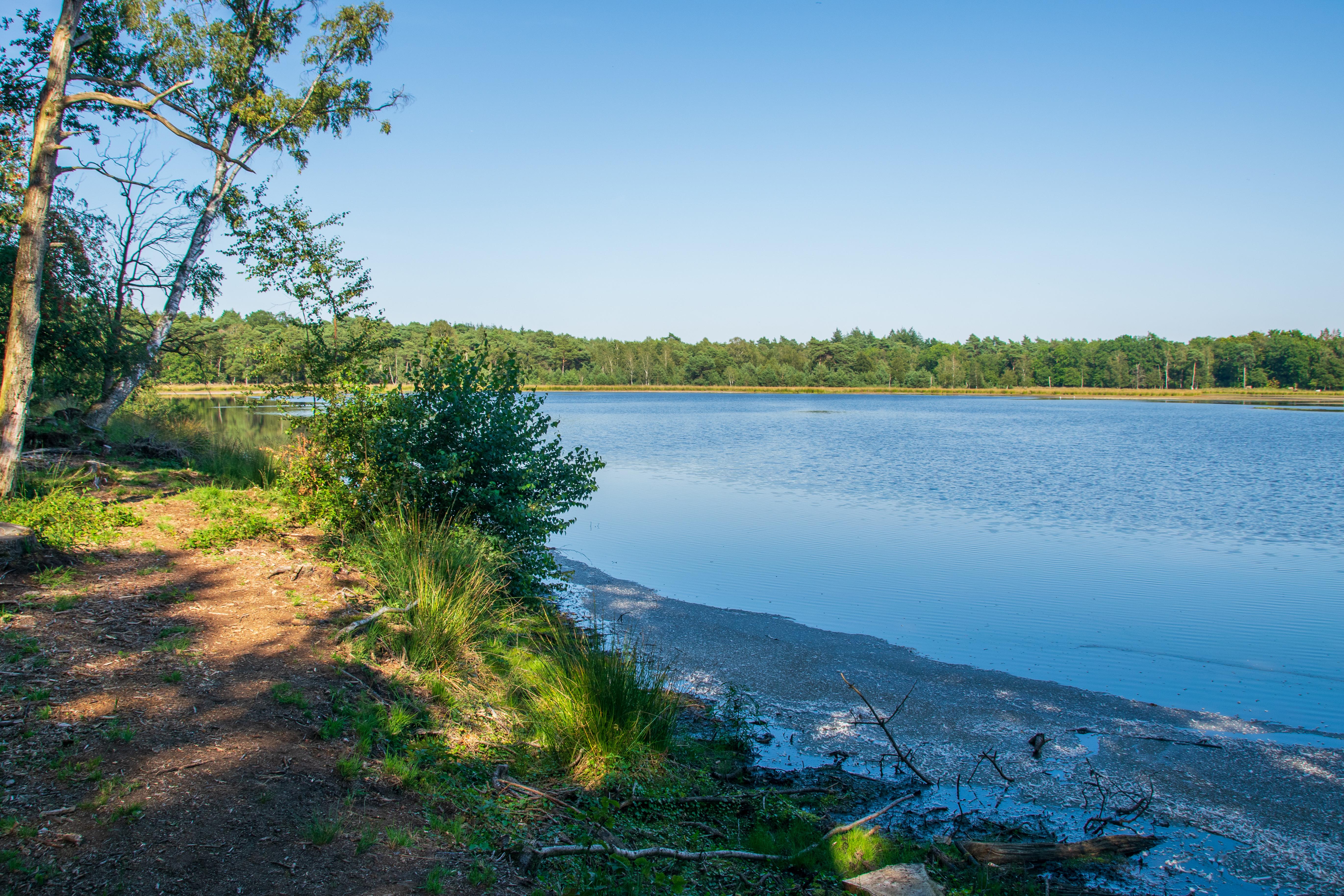 19 Lake