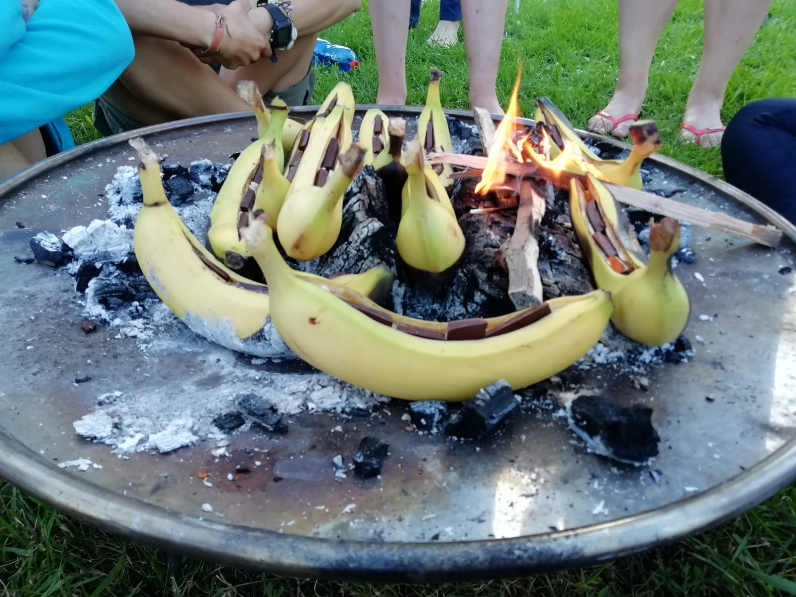 21 Camp Bananas