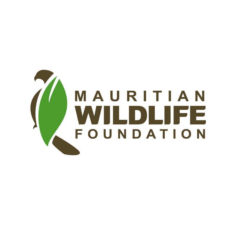 Volunteer Field Assistants Required – Islands Restoration Programme