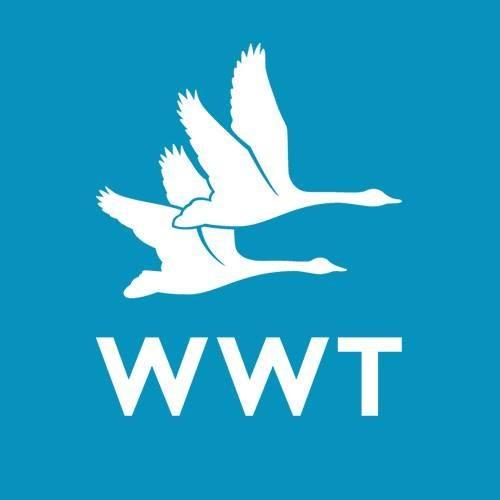 WWT International Engagement Internship 2020/21
